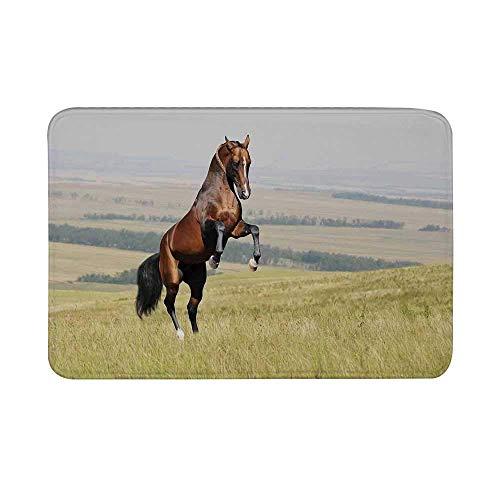 LiminiAOS Tapis de Porte antidérapant pour Chevaux, étalon de Cheval de la Baie Akhal Teke élevage sur Le Terrain Tapis de Sol Pastoral pour mammifères extérieurs pour Salle de Bain Salon