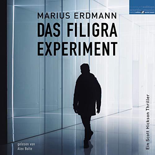 Das Filigra Experiment Titelbild