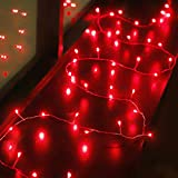 ZSML Cadena de Luces de Hadas de San Valentín, 6.5 pies 20 Luces LED Rojas de petardo con Pilas para el día de San Valentín, Boda, Interior, Exterior, Dormitorio, jardín, decoración de Fiesta