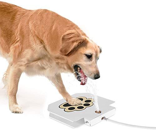 Anself -   Hund Trinkbrunnen