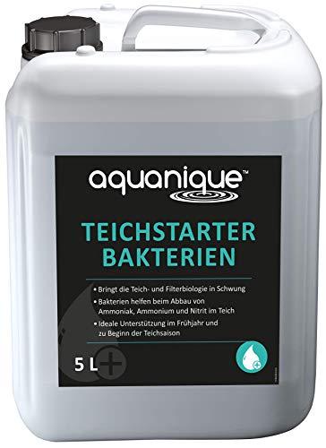 AQUANIQUE Teichstarter Bakterien 5 l (für 150.000 l) flüssig für Gartenteiche - wertvolle Starterbakterien Filterbakterien zum Abbau von Schadstoffen ideal zur Teichpflege im Frühjahr