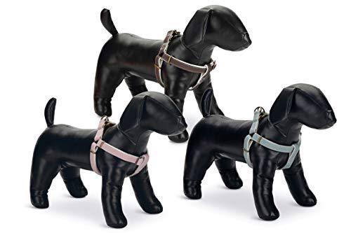 Beeztees anti-trek-servies voor honden, 300 g