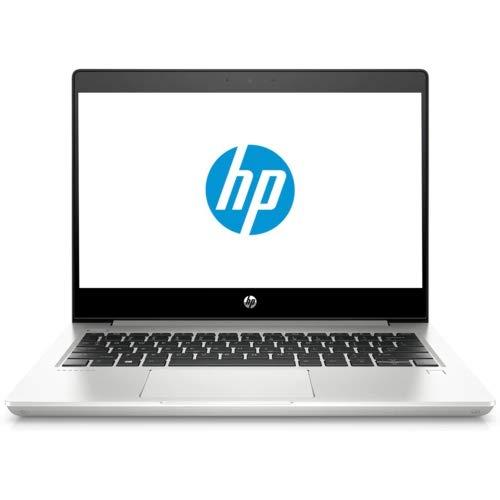 HP ProBook 430 G6 Notebook Intel Core i5-8265U 4GB RAM 1 TB HDD Windows 10 Pro Silver