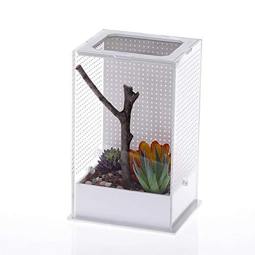 dewdropy Povanjer Faunabox 12x10x20cm Mantis Acryl Fütterungsbox Mantis Zuchtbox Insekt Transparente Reptilien Fütterungsbox