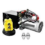Fisters pompa del rimorchio 3 Quart 12V elettrico di potenza idraulica doppia/semplice effetto alimentatore per autocarro con cassone ribaltabile (3 Quart a doppio effetto)