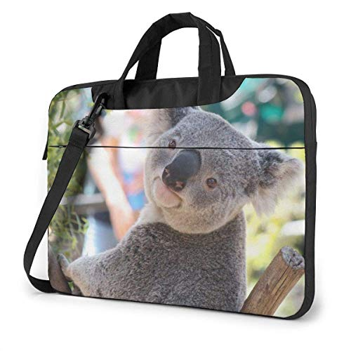 Australia Koala Bear Laptop Messenger Bag, Estuche portátil para HP Ultrabook Chromebook