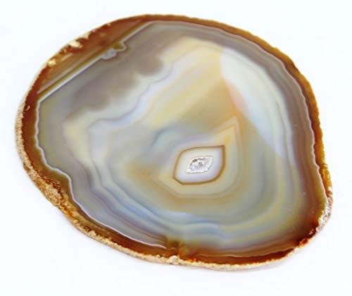 Agata Mineral Import Lámina de una Geoda de Ágata - Preciosa Geoda de Las Minas del Brasil - Medidas Aprox. : Peso 200 g/Diámetro: 11 cm - Color: Marrón/Gris