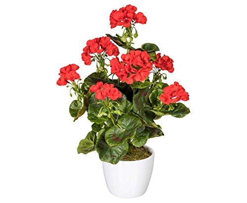 Kunstpflanze Geranie rot blühend...