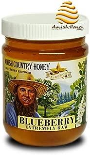 Goshen Honey Amish Extremely Raw BLUEBERRY Blossom Honey 100% Natural Honey Health Benefits Unfiltered OU Kosher Certified | 1 Lb