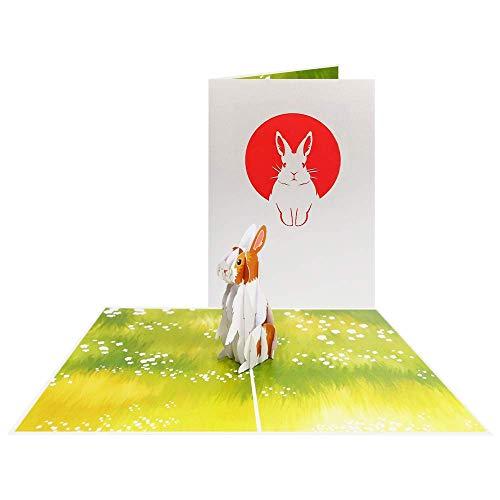 Tiere Pop Up Karte Kaninchen Glückwunschkarte Grußkarte Gutschein Geburtstag Ostern Gruss - Hase 158