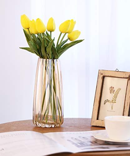 Lewondr Vaso da Fiori, Altazza di 22cm, Vaso in Vetro Vaso di Fiori Design Moderno Elegante Vasi Decorativi Verticale Linea Contenitore Fiori Decorazione per Casa Ufficio Tavola - Ambra