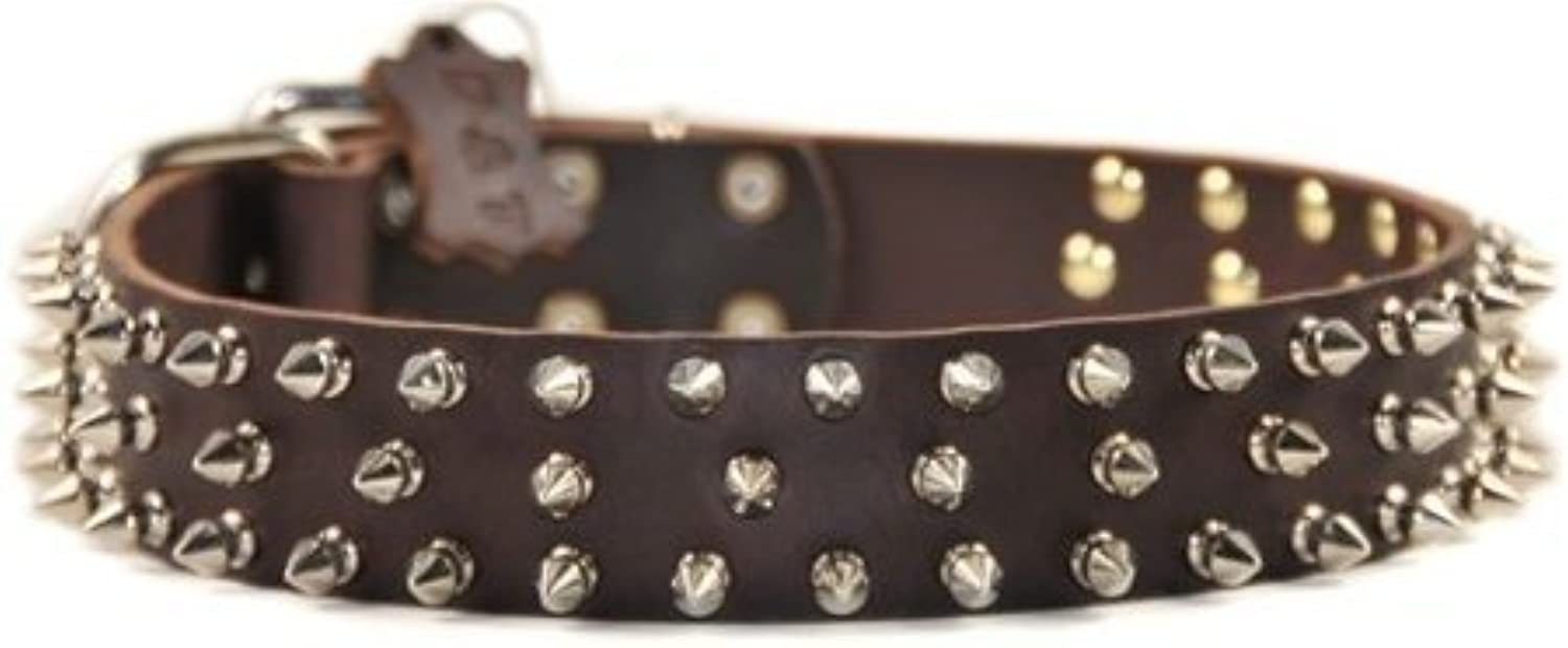Dean and Tyler  TRIPLE THREAT , Leather Dog Collar with Nickel Plated Spikes  Brown  Size 66cm by 4cm  Fits Neck 61cm to 71cm