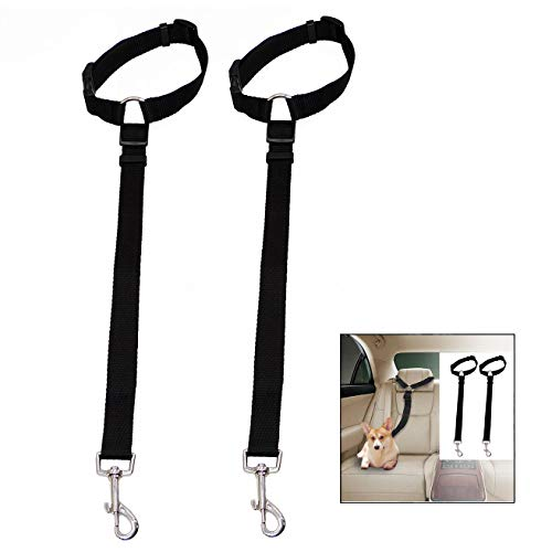 iPobie 2 Pezzi Cintura di Sicurezza per Cani,Guinzaglio Cane Auto Cintura in Nylon Regolabile per Cani di Piccola Taglia,Media e Grande,Nero