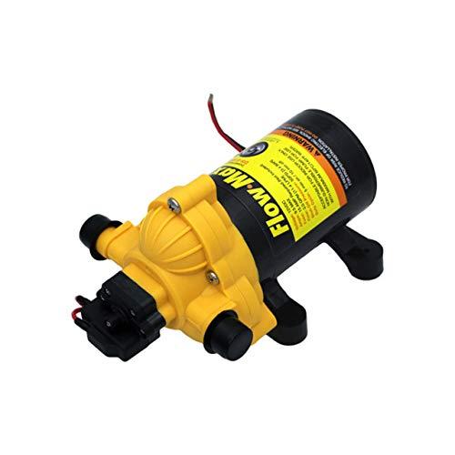 Flow Max 689052 Lippert - Bomba de agua (12 V, 3,0 GPM)
