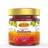 Birkengold Erdbeer Marmelade 200 g | ohne Zuckerzusatz | mit europäischem Xylit gesüßt | 70 % Fruchtanteil...