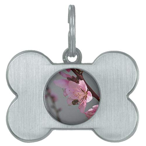 Stainless Steel Pet ID Tags, Honey Bee Feeding On Peach Tree Blossom Pet Name Tag, Dog Tags, Cat Tags, Bone Shaped ID Tag for Dogs and Cat