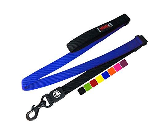 DDOXX Hundeleine Bungee Nylon 120 cm | viele Farben & Größen | für kleine & große Hunde | Elastische Leine Hund groß | Ruckdämpfer Hunde-Leinen klein | Flexi-Leine | Führleine | Blau, 1,20 m