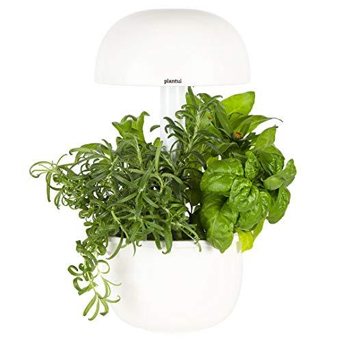 PLANTUI SG3e-W Smart Garden, Blanco, 19 x 19 x 37 cm