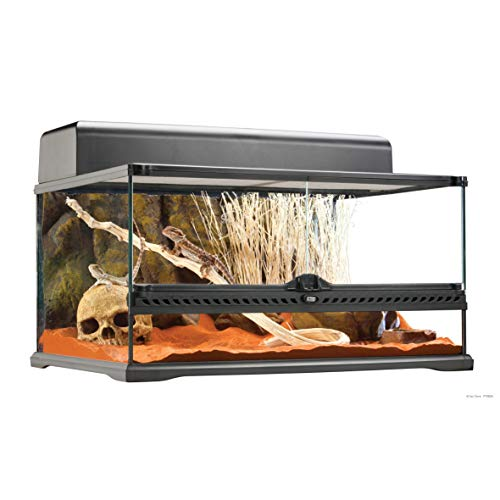 Exo Terra Glass Natural Terrarium Kit, for Reptiles and Amphibians, Short Wide, 24 x 18 x 12 inches, PT2604A1