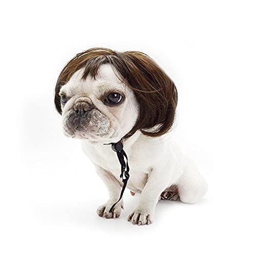 CNHNGTS Disfraz de gato con peluca para perros y mascotas, de alambre de alta temperatura, accesorios para la cabeza de animales