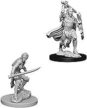 Wizkids D&D Nolzurs Marvelous Miniatures Female Elf Fighter