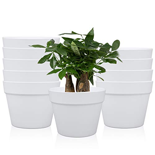 small plastic plant containers - 9