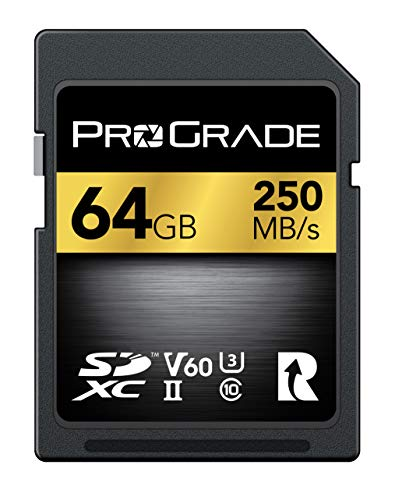ProGrade Digital (プログレードデジタル) 【SDXC UHS-II V60】 GOLD 250R メモリーカード 正規輸入品 (64GB)