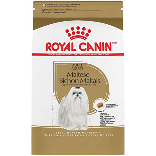 Royal Canin Maltese Adult Breed Specific Dry Dog Food, 10 lb. bag