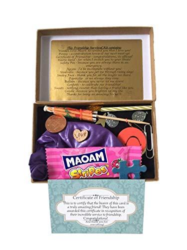 Friendship Survival Kit Box - Novelty Survival Kit for Your Bestie -...