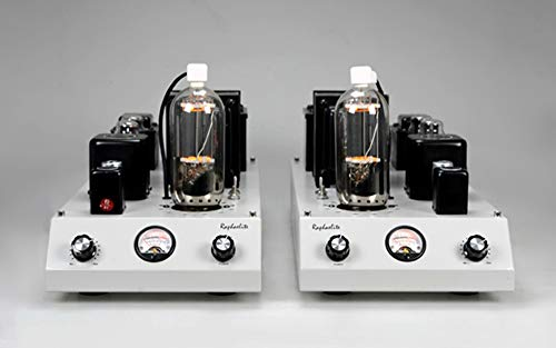Learn More About Raphaelite CSM05 Power amplifier Single-ended Monoblock 805 Tube Amp Pair with Prot...