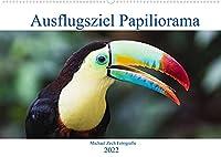 Ausflugsziel Papiliorama (Wandkalender 2022 DIN A2 quer): Das Papiliorama entfuehrt Sie in die Welt der Tropenwaelder. (Monatskalender, 14 Seiten )