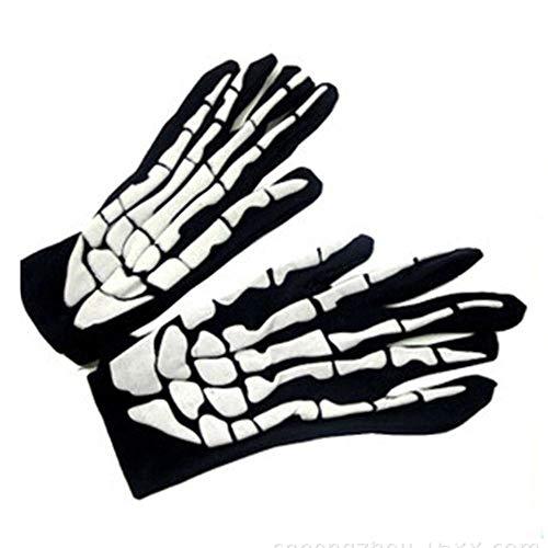 Skelett Skeleton Knochen