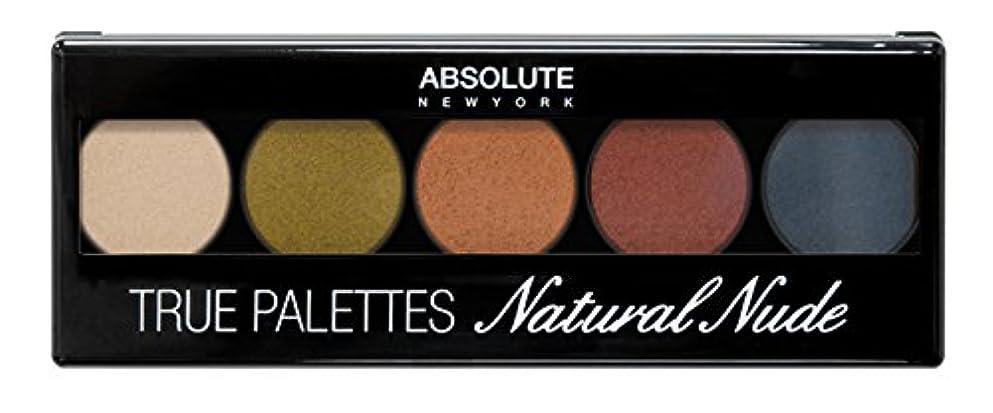 シネウィ降ろす時間とともにABSOLUTE True Palettes - Element (並行輸入品)