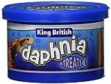 King British Daphnia - Pecera, 7 g