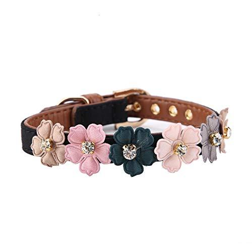 Pssopp Hundehalsband Fashion Flower Dekor Halsband Einstellbare Daisy Blumen Haustier Kragen PU Leder Hund Halsbänder für kleine Katze Hund(1.3 * 42cm-Schwarz)