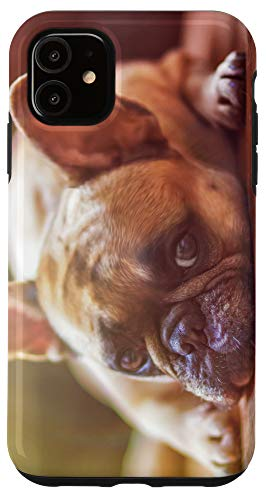 iPhone 11 French Bulldog Phone Cover Case