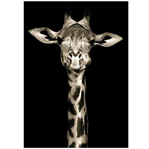 YANGMENGDAN Druck auf Leinwand Tiere Leinwandbilder Die Wandplakate und Drucke Giraffe Art Dekorative Leinwanddrucke für Wohnzimmer Wand Cuadros 60x80cm Kein Rahmen