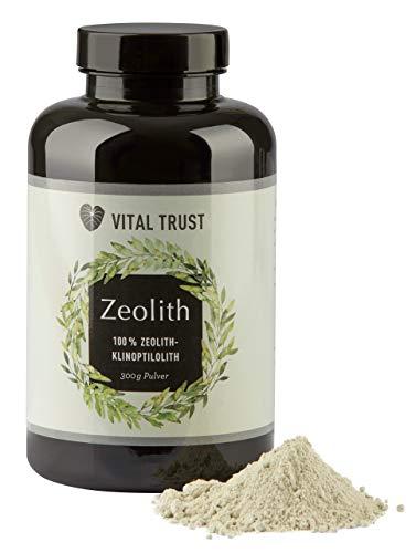 Vital Trust Zeolith Pulver – Detox Entgiftungskur – 100% Natürlich, Vegan - Ideal zum Abnehmen und Entschlacken, Natürliches Betonit Vulkan-Gestein, Heilerde, Körperentgiftung | 250 g
