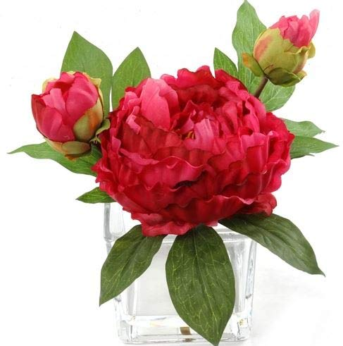 Handcrafted Artificial Peony Silk Flower Arrangement in Vase | Real Look Fuchsia Silk Perennial Peonies | Lush Layers of Petals Combine Deep Hues of Fuchsia and Raspberry for a Beautiful, Natural Look