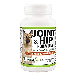 Dog Supplements For Joints 1