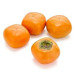 国内産 種なし柿 4個