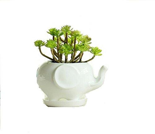 Keramik-Blumentopf mit Tierdesign von Somarke, weißes Porzellan, Sukkulenten-Töpfe für Zuhause/Garten, Übertopf/Vase, Mini-Deko