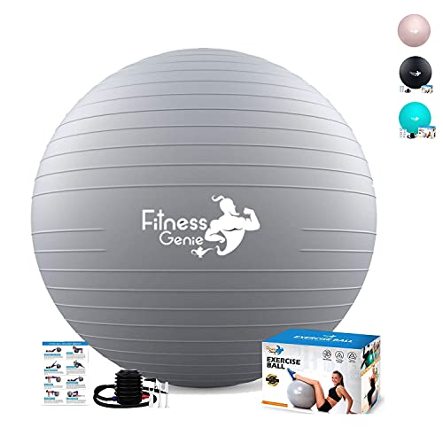 Exercise Ball 65Cm with Air Foot Pump - Yoga Ball for Balance Exercise Workout Anti-Burst...