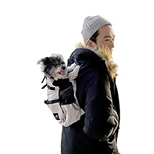 Amelia Nest Dog Carrier Backpack | Dog Backpack for Everyday Travel Needs, Urban, Biking, Hiking, Camping, City Commute | Front Facing | Safe | Small S | Grey, Gray