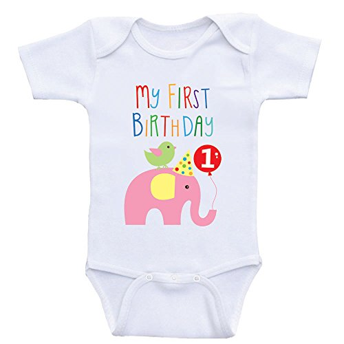 Heart Co Designs First Birthday Baby Clothes My First Birthday Onesies for Babies (12mo-Short Sleeve, Light Pink Elephant)