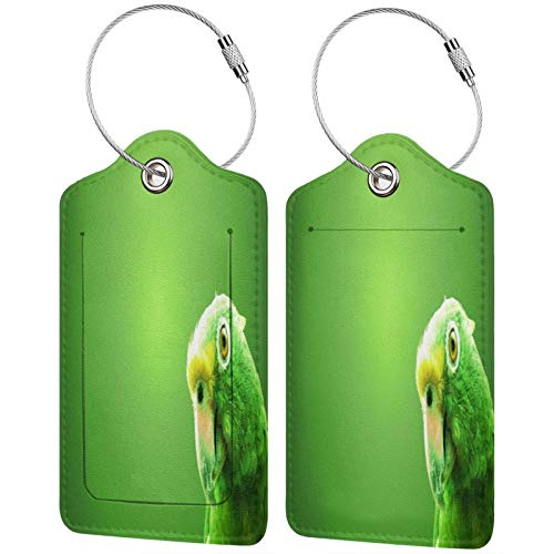 Fuliya Kofferanhänger aus hochwertigem Leder für Koffer – Reiseausweis-Etiketten-Set für Taschen und Gepäck – Männer und Frauen, Papagei, Vogel, Schnabel, Hintergrund