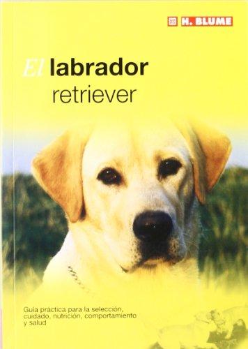 El labrador retriever: 13 (Mascotas)