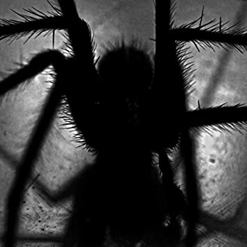 Haunting Screams and Other Ghoulish Sounds To Creep You Out