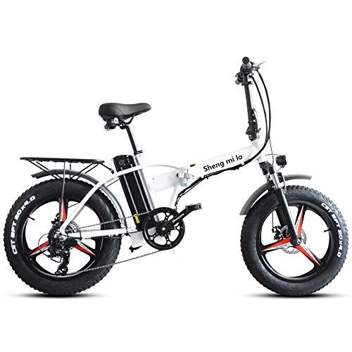 Skyzzie Klapprad 20 Zoll Faltrad E-Bike Pedelec Elektrofaltrad Klappfahrrad F04, 7 Gang-Schaltung, LCD-Instrument, 48V 15AH,Weiß/Schwarz