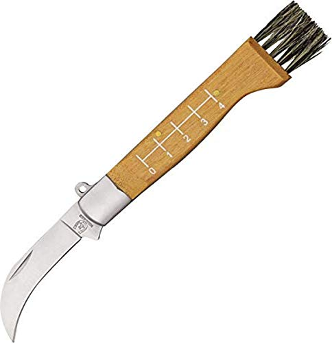 Rough Ryder Mushroom Hunters Knife, one Size (RR1400)
